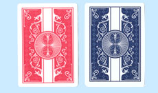 Bicycle Rejuvenate Playing Cards