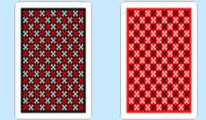 Copag Master Plastic Playing Cards